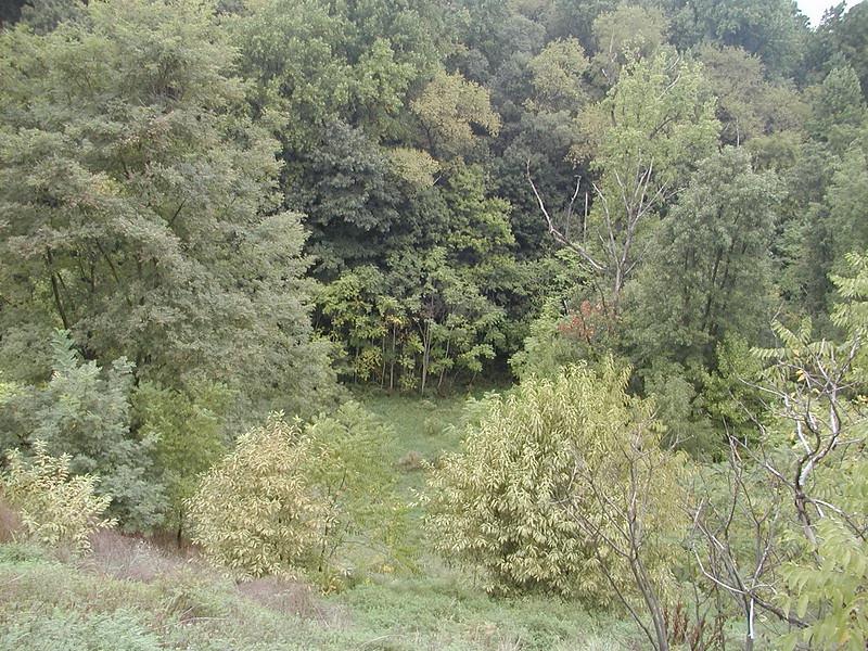 2002-09-21-Christ-Kamages-Visit-New-Property_021.jpg
