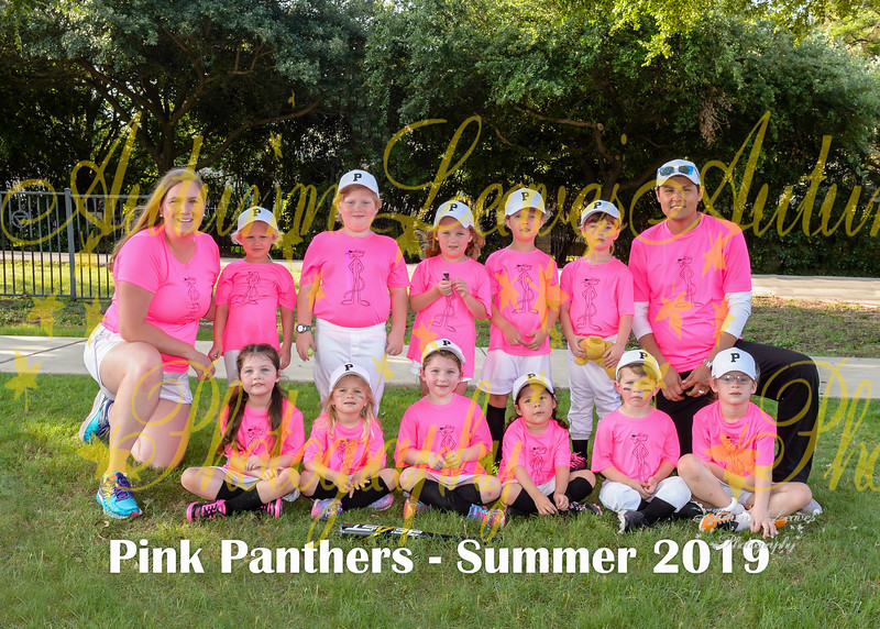 20190620 - # T1 PKG Pink Panthers