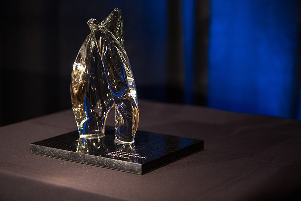 The Eisner Prize for Intergenerational Excellence Award