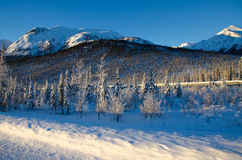 USA-Alaska-atigun pass-3140.jpg