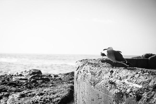 Victoria Beach - 1.31