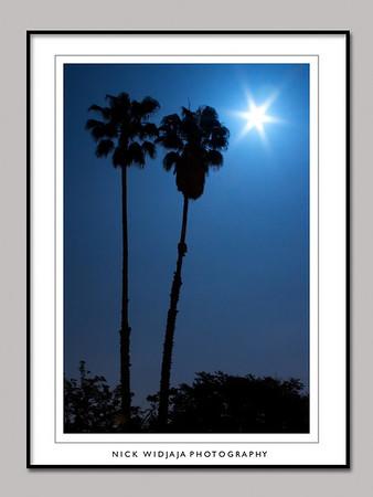 Moon light, 04.30.2007
