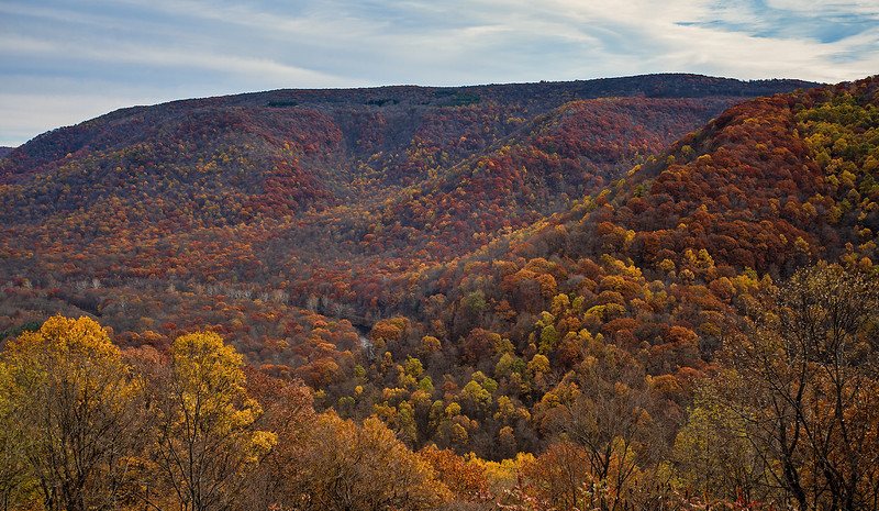 IMG_3751-OPScenicOverlook2.jpg