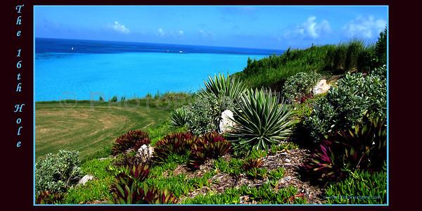 Bermuda Bound
