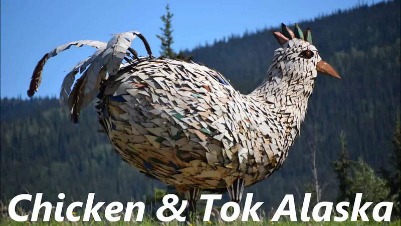 Chicken & Tok, AK #11.mp4
