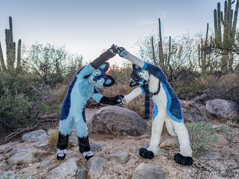 Arizona New Years 2019-091-Edit.jpg