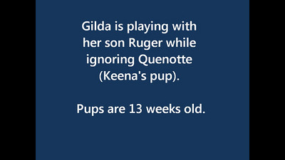 Gilda plays with her son but ignores Quenotte