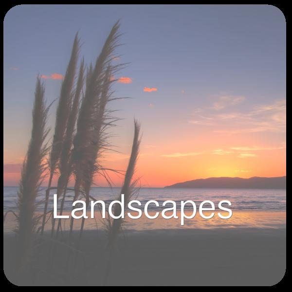Landscapes-x2.png