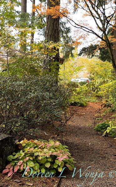 Dietrick fall garden_2105.jpg