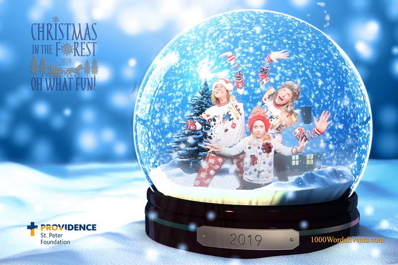 Providence Christmas Forest-111.jpg