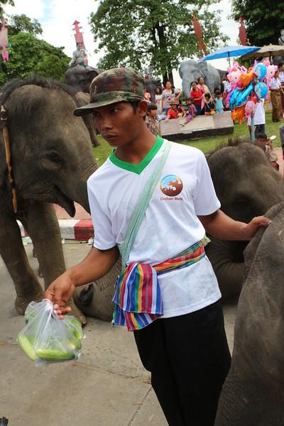 2014-11-14 Surin Elephant Welcome Feast 802.JPG
