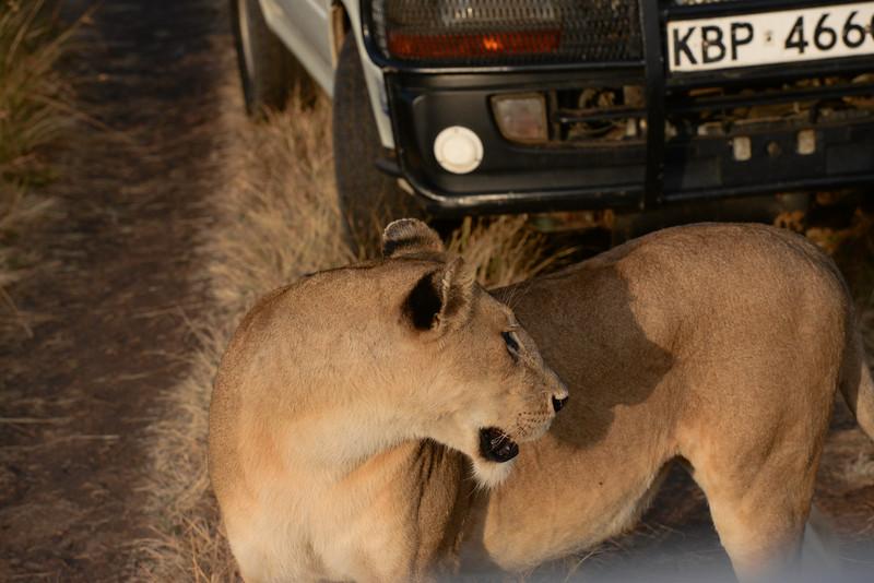 2016 Mercy House Vision Trip Kenya - Day 6 030.jpg