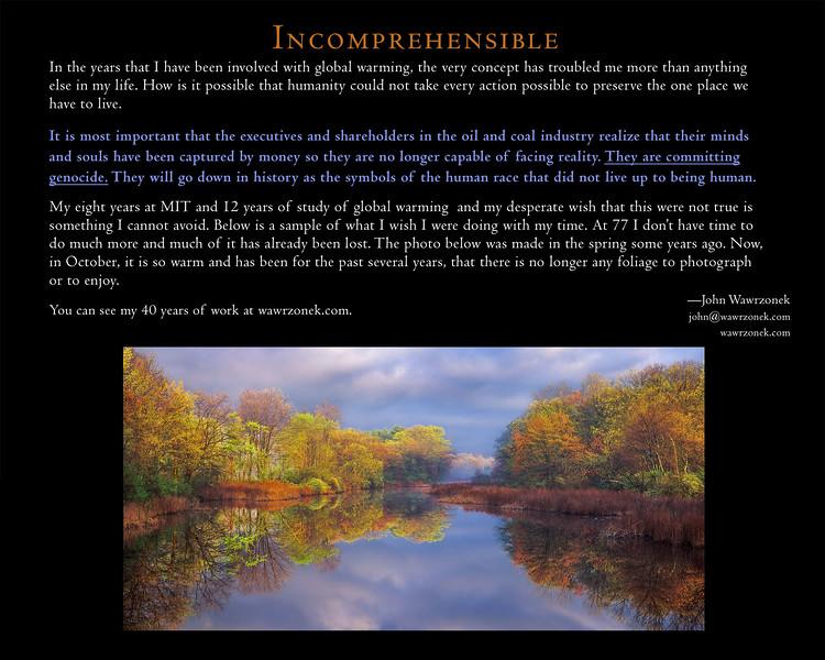 incomprehensible 22.jpg