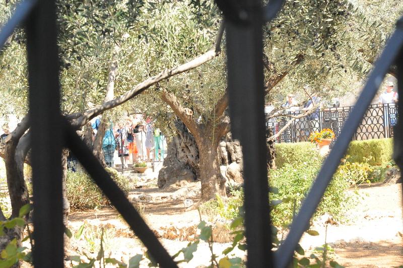 Israel2017-1275.JPG