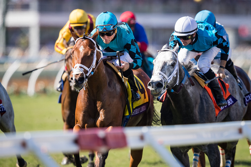 Stormy Liberal (#4, Stormy Atlantic) wins the BC Turf Sprint at Del Mar on 11.4.2017. Joel Rosario up, Peter Miller trainer, Rockingham Ranch owners.