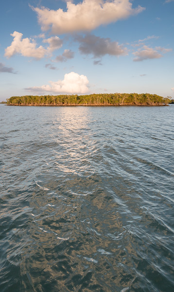 Just one of the Ten thousand Islands