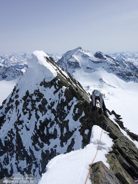 Signalhorn summit ridge