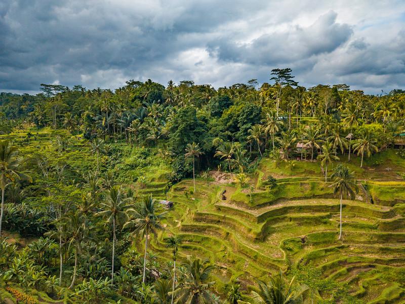 Bali (170).jpg