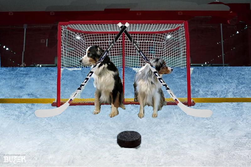 OlympicHockey.GaWy2.jpg