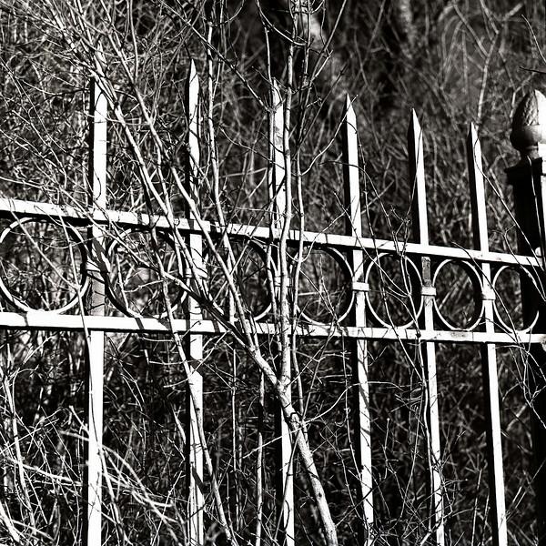 47476733_Techney fence