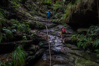 Glen Davis Canyoning Jan 2017