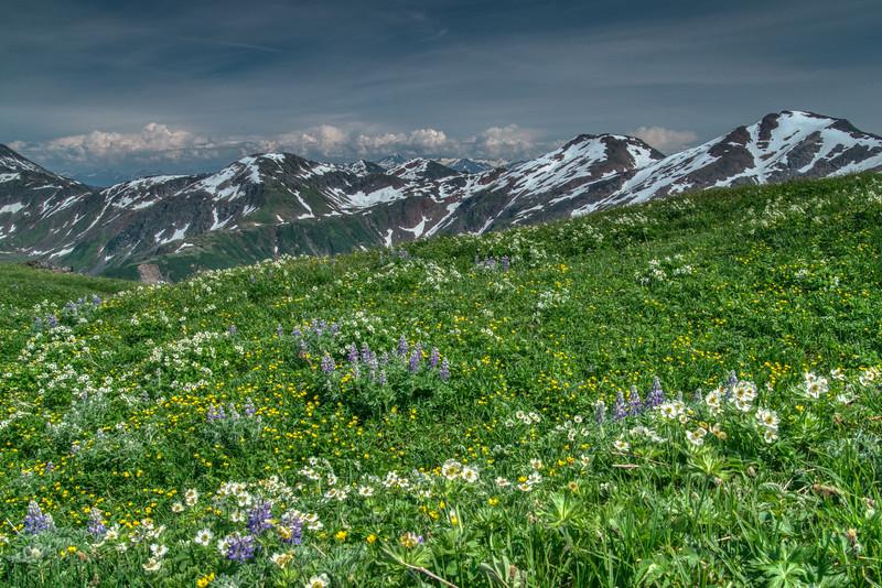 Juneau Alaska 2019-39.jpg