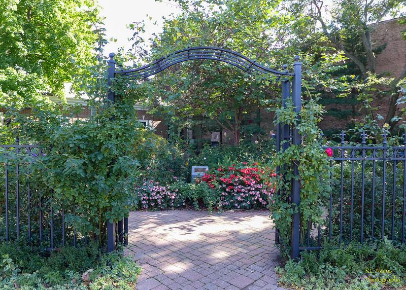 Mize Rose Garden 0673.jpg
