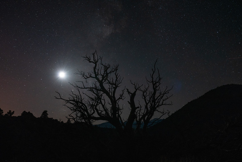 Flagstaff Moonset