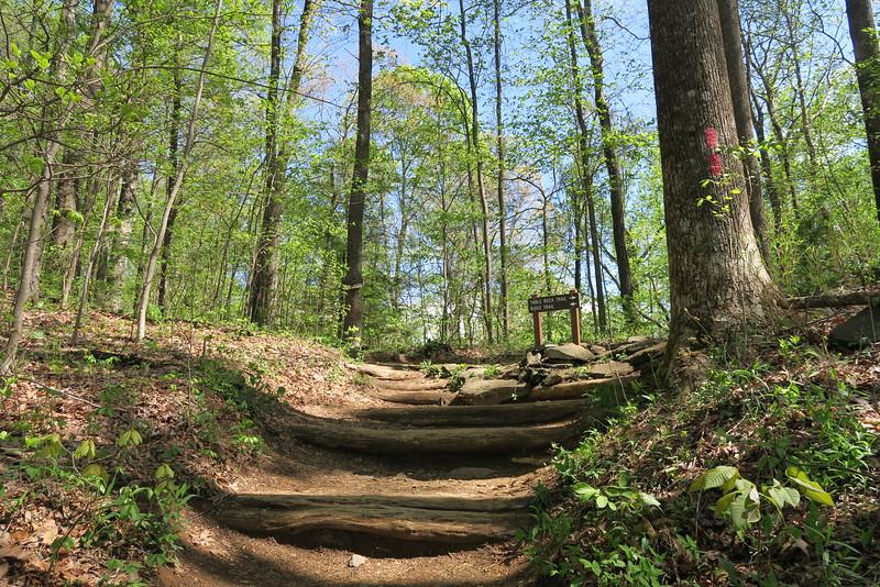 Table Rock-Ridge Trail Junction - 2,530'