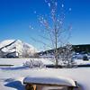 Bench under snow