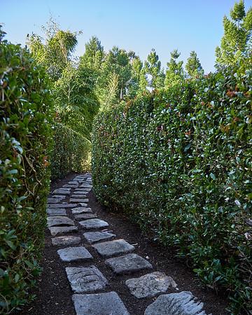 Scouting - Nerima Gardens, IPSWICH