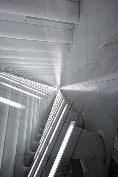 2016 - WTC-5.jpg