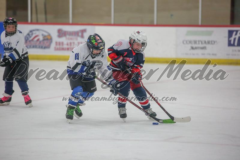 Blizzard Hockey 111719 7858.jpg
