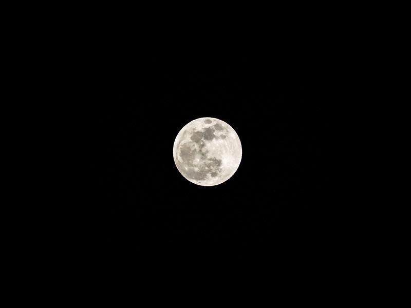 moon pre-6.jpg