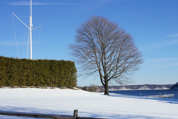 Oyster Bay Winter 2011