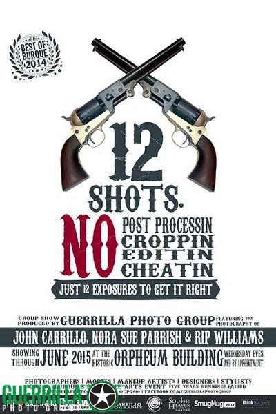12 shots poster.jpg