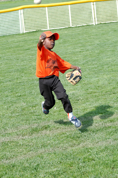 Tiger Baseball April 2008