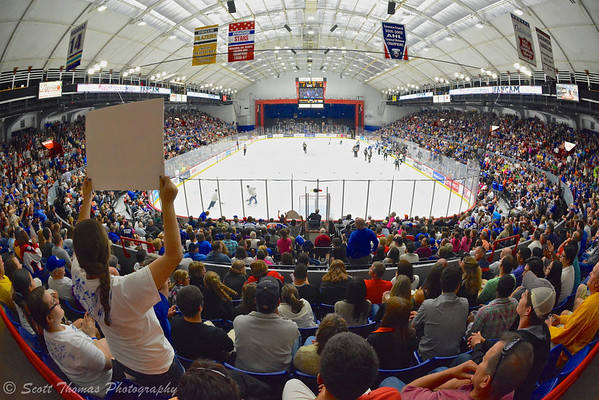 Syracuse Crunch fans fill the Onondaga County War Memorial on Saturday, June 1, 2013.