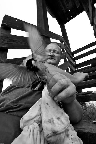 Alfréd Trnka ornitológ