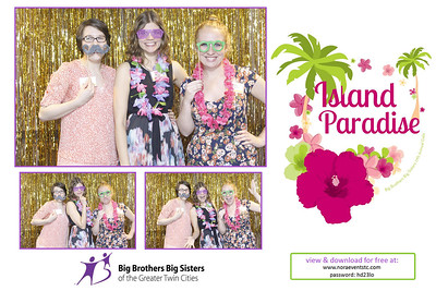 Big Brothers Big Sisters Gala | strips