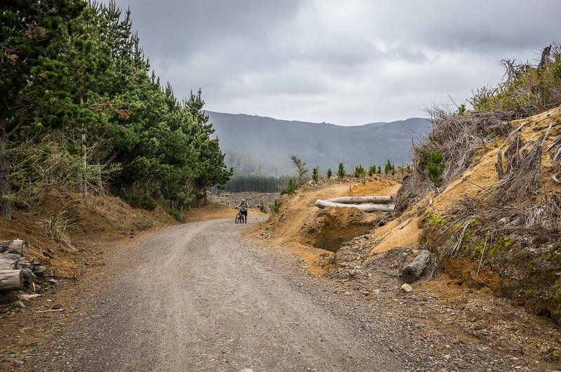 2014-08 New Zealand 1224