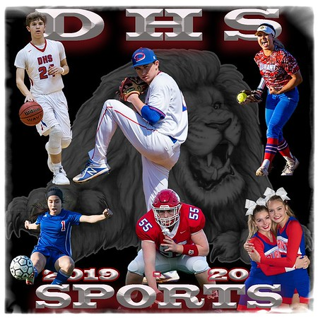 DHS Sports 2019-20