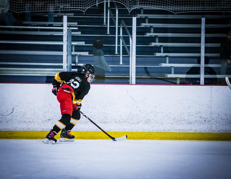 Bruins2-241.jpg