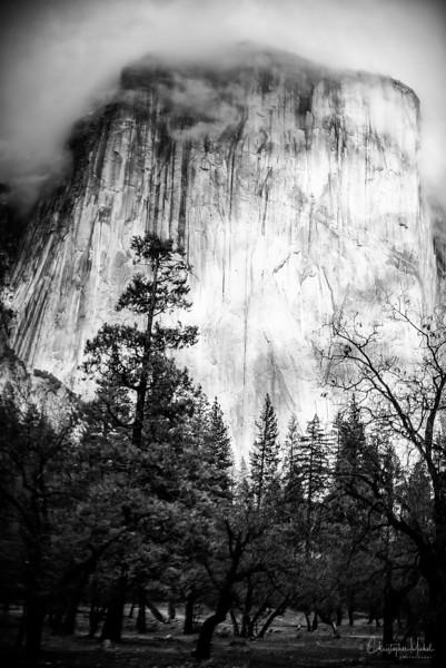 20141213_Yosemite_2876.jpg