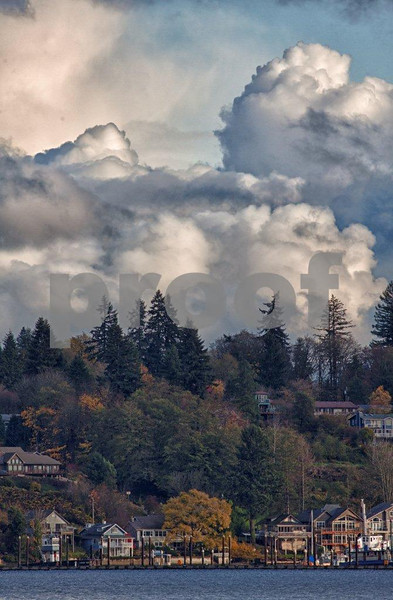 East Olympia & Budd Inlet-V _4846_HDR.jpg