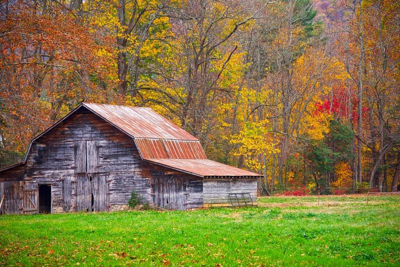 Rusty Barn Fall 1.jpg