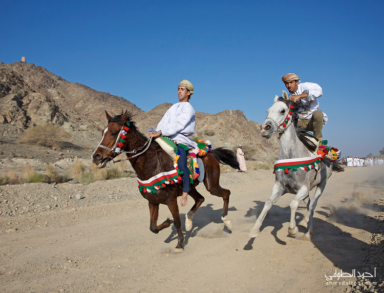 Oman (133).jpg