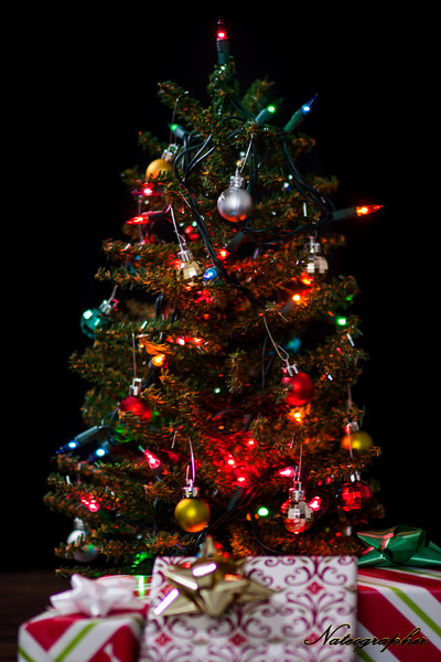 Christmas tree-029.jpg