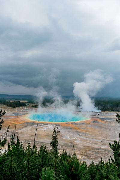 Yellowstone et al. 2014