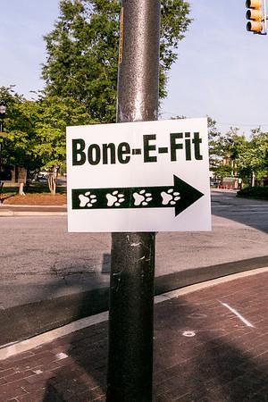 Bone E Fit 2014